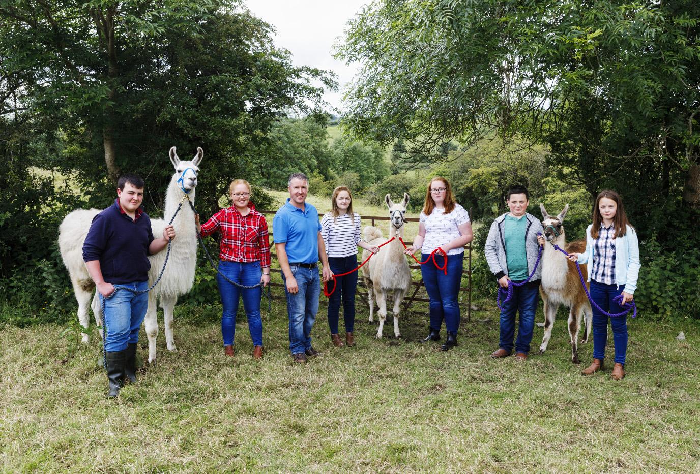 BBC One, Oneness, Llamas, Photographer: Martin Parr