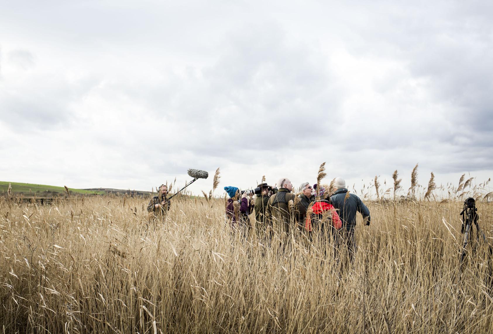BBC Oneness, Birdwatchers, Rainham, Photographer: NAILA ZAHOOR